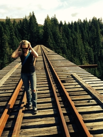 Last shot I took of Vance Creek Bridge shortly before they tore it out Part of two highest railroad arches in the US - Shelton WA