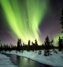 Last week I fulfilled a lifelong dream experiencing the Northern Lights Jukkasjrvi Sweden