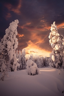 Last winter wasnt the coldest or the snowiest but man it was pretty Taken in northern Finland