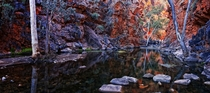 Late afternoon light in Serpentine Gorge in West McDonnells NT Australia by Lizzie