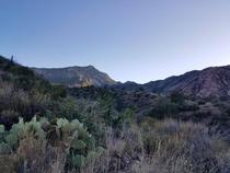 Late December after noon in Big Bend NPs Chisos Basin
