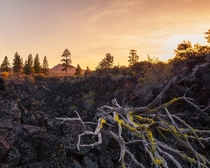 Lava Beds National Monument CA