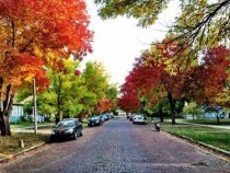 Lawrence Kansas USA Picture of Fall