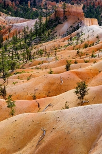 Layers at Bryce Canyon Utah on an early morning hike through the hoodoos  OC