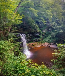 Left Switzerland for Pennsylvania - PA youre still gorgeous Through the brush a hidden cascade - Ricketts Glen
