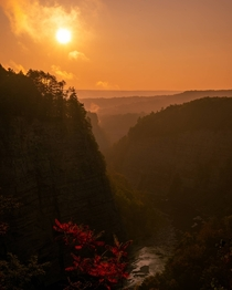 Letchworth State Park sunrise looking like Jurassic Park in the apocalypse