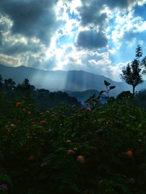 Light Scatter on Munnar Hills  IG muktisp