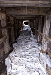 Lingering summer snow in a mine shaft at Stevens Gulch CO