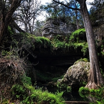 Listening and viewing in silence in this miraculous environment Humbles ones soul Westcave Preserve TX