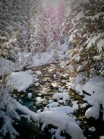 Little Cottonwood Creek at the White Pine Trail Head above Salt Lake City Off to another day of skiing Utah powder OC