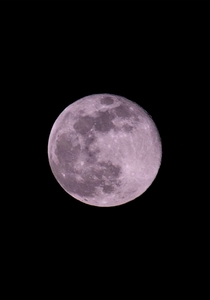 Little late posting this but pink super moon