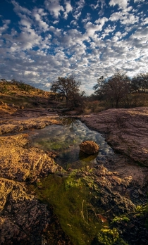Little Pond at Enchanted Rock State Park