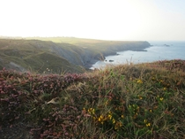 Lizard Peninsula Cornwall