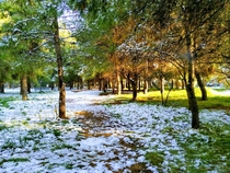 Local park in Maroussi Athens Greece during the one single day of winter we got
