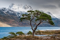 Loch Maree and the imposing Slioch Scotland  photo by Paul Byrne