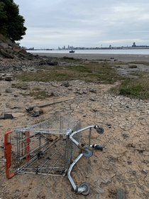 Lonely shopping trolley on west shore of the Mersey opposite Liverpool low tide You can see the cathedral and docks on the other side This area is called New Ferry the first services recorded were in  Services stopped in the s Now just crumbling concrete