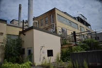 Long-abandoned chemical plant overtaken by plants