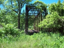 Long forgotton Railroad bridge in the Cuyahoga Valley National Park