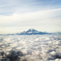 Looked out the window on my plane to see Mount Rainier in Seattle Washington sitting above the clouds OC