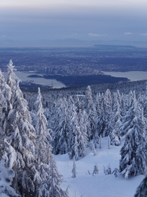 Looking Down on Vancouver from Hollyburn Mountain British Columbia Canada