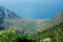 Looking into the Pacific from Pihea trail on Kalalau Valley - Kauai Hawaii