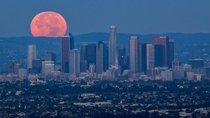 Los Angeles during the blood moon