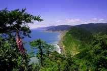 Lost Coast Wilderness and Kings Range Coastline California xpost from rSeaPorn