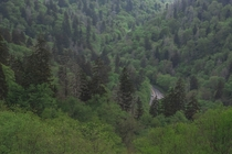 Lost in the Smokies  Cherokee NC Blue Ridge Parkway