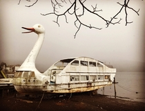 Lost swan pleasure cruiser Lake Nojiri Nagano Japan