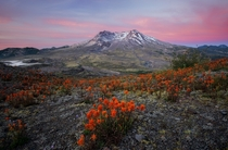 Lost the raw files from this morning so this is the only remaining jpg Mt St Helens Washington State