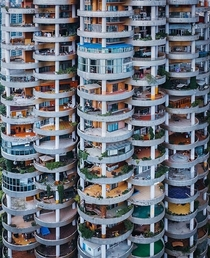 Lots of creative things going on on these balconies in Guiyang China