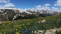 Loveland Pass CO  Galaxy S HDR