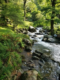 Lovely stream on our first outing in Ireland Glendalough Upper Lake Wicklow Mountains National Park OC x