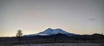 Low Saturation Mt Shasta Sunrise