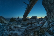Low tide reveals such amazing devastation at Ruby Beach Washington