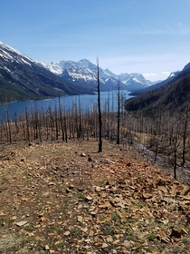Lower Bertha Falls Trail Waterton AB Canada  x