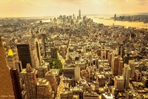 Lower Manhattan from the Empire State Building  by Guillaume Petard