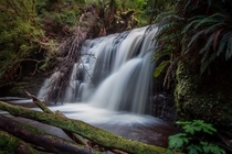 Lower Waipohatu Falls hidden deep in the Catlins New Zealand