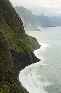 Lush and curvy - the tallest sea cliff in the world gtm Molokai HI