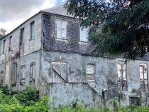 Lush greenery springing up all around an old abandoned bungalow in hurricane ravaged Caribbean Islands St Croix USVI