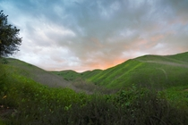 Lush hills after the rain in California USA