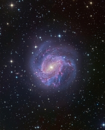 M southern pinwheel galaxy processed by me Data is from Matt Dieterich