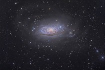 M The Sunflower Galaxy