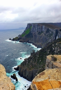 m windswept cliffs of Cape Pillar Tasmania With a plant hanging on for life