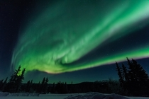 Magical aurora in Fairbanks Alaska while on a photo workshop with Skyfire In Focus Tours