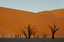 Magical Namibia Looks like the backdrop of an old disney cartoon