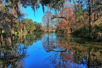 Magnolia Plantation and Gardens Charleston SC