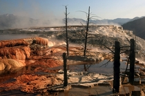 Mammoth Hot Springs by Brocken Inaglory
