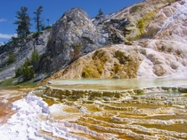 Mammoth Hot Springs - Yellowstone National Park Wyoming USA