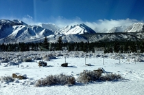 Mammoth Lakes California after a fresh snowfall  Taken --